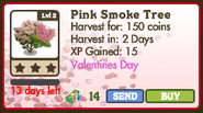 Pink Smoke Tree Market info
