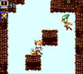 Tails Adventure screenshot 9