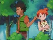Brock pulling Misty by the ear again