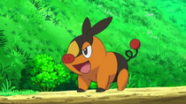 EP727 Tepig de Ash