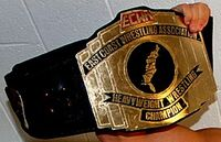 ECWA Mid-Atlantic Champion