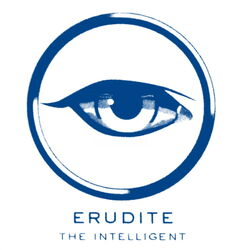 Team Erudite ROCKS