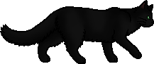 Hollyleaf.loner