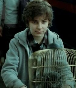James Potter II