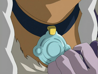 Yue's necklace