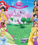 New-Disney-Princess-Background-disney-princess-28265123-1000-1171