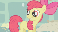 Apple Bloom smiling thinking she has her cutie mark S1E12
