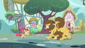 Apple Bloom lion taming S2E6.png
