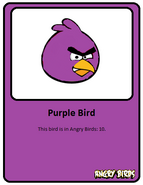 Purple-card