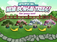 Bonsai Tree Loading Screen