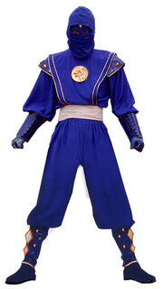 Mmpr-blueninja