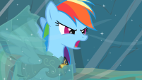 201px-Rainbow Dash Earth ponies are numbskulls! S2E11