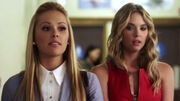 PLL218 (6)