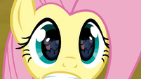 Fluttershy&#39;s eyes S02E19
