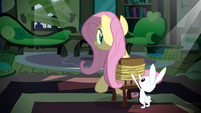 Angel tying up Fluttershy S2E19