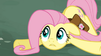 Fluttershy collapsed S02E19