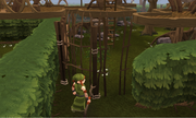 Tree Gnome Village entrance