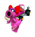 Birdo mkcr