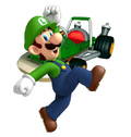 Luigi mkcr