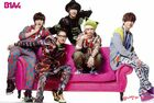 B1a4 (6)