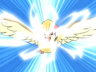 EP459 Pidgeot usando golpe aereo
