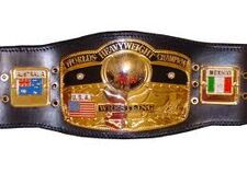 NIWA World Heavyweight Championship