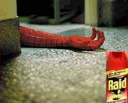 Raid-is-spidermans-killer