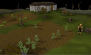 Fisher King realm farm