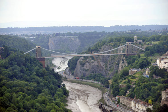 Avongorge1