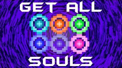 How to get ALL SOULS in Terraria HERO