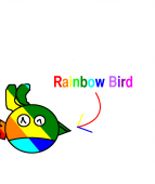 Rainbow Bird