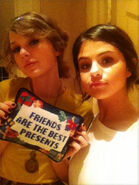 Taylor swift selena gomez friendship pillow