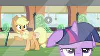 Applejack talking to Twilight 2 S2E25