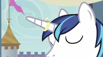 Ring on Shining Armor's horn S2E26