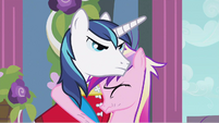 Shining Armor as if S2E26