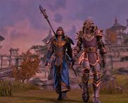 The-elder-scrolls-online-screenshots