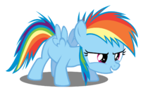 FoalRainbowDash