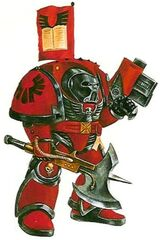 Librarian Terminator Blood Angels