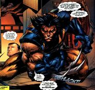 Wolverine unmasked