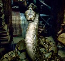 My Beloved Nagini