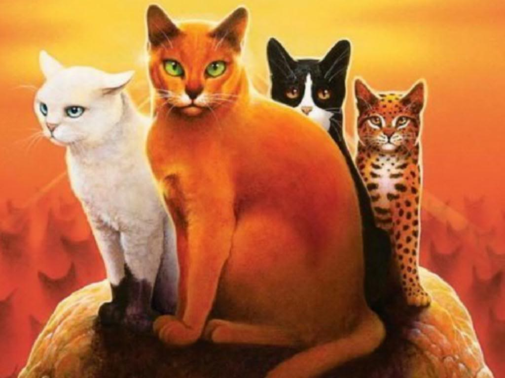 Anführer – warrior cats wiki