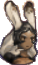 Fran Sprite