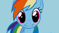 Rainbow Dash big smile S1E03