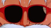 Roshi sunglasses