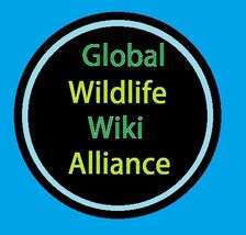 Global Wildlife Wiki Alliance