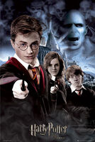 Lgfp1811harry-hermione-and-ron-harry-potter-and-the-order-of-the-phoenix-poster