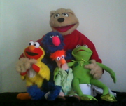 Sunshine and the muppets