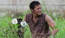 Walking-Dead-Cherokee-Rose