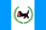 Flag of Irkutsk Rep