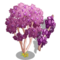 Chinese Redbud Tree-icon